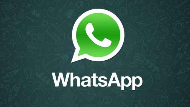 WhatsApp, Android,  text Status, WhatsApp text Status, feature Update, Download