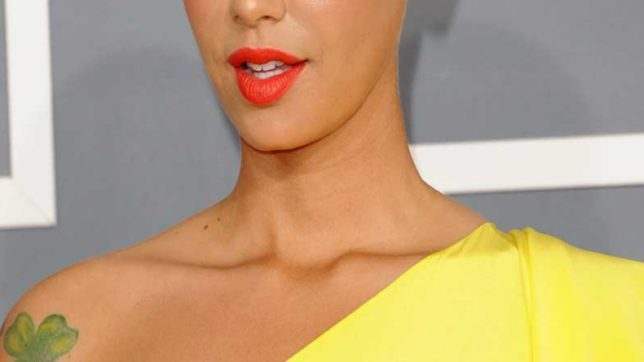 A Thief, broke glass,  kitchen, home, Theft, Amber rose, Hollywood Actress, Hollywood News, India News